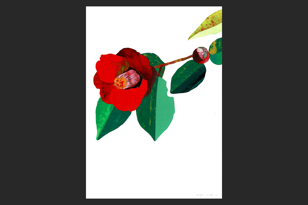 イロドリコラージュ ― あなただけの花をつくろう ―